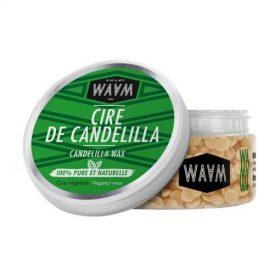 WAAM Cire de Candelilla