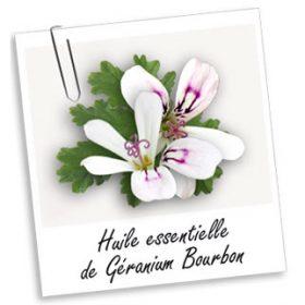 Huile Essentielle: GERANIUM (10ml)