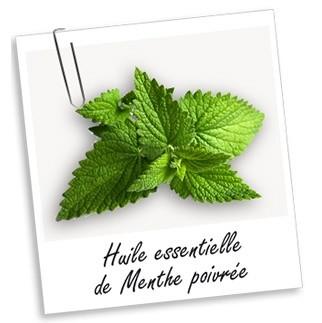 Huile essentielle: Menthe Poivrée (30ml)