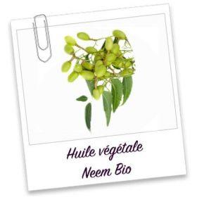 Huile végétale bio: NEEM (30ml)